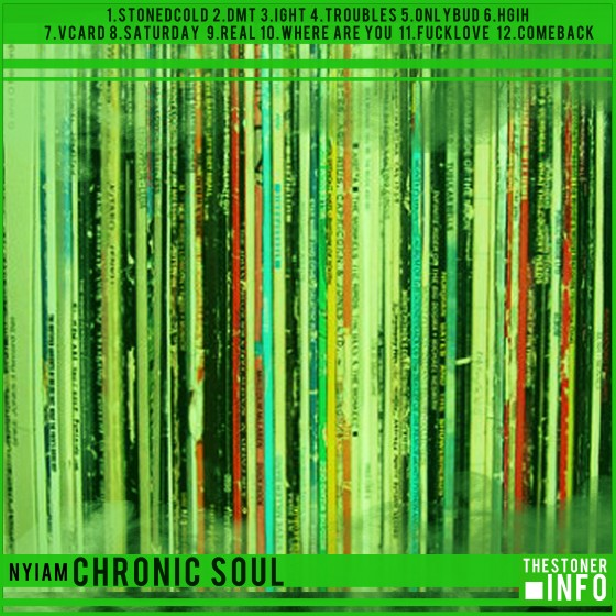 nyiam-chronicsoul-cover