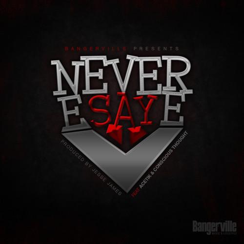 bangerville-neversaynever-artwork