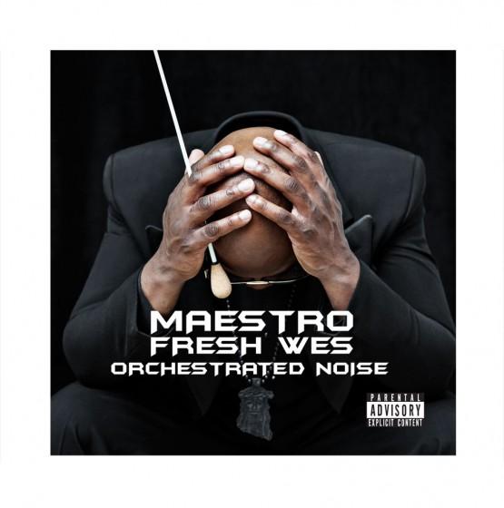 maestro-orchestratednoise-cover