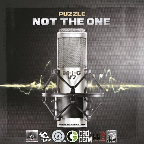puzzle-nottheone-artwork