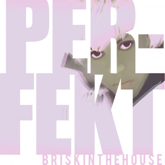 briskinthehouse-perfekt-artwork